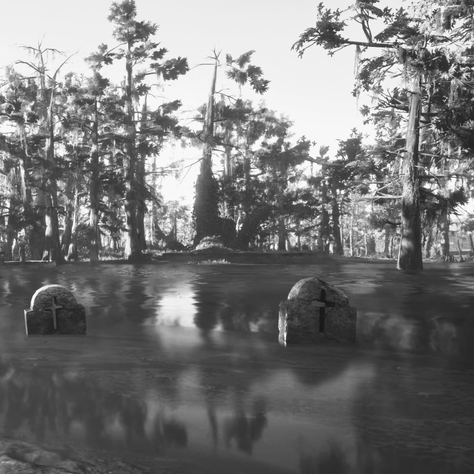 graves in a bayou